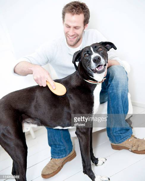 young man cleaning his dog with brush