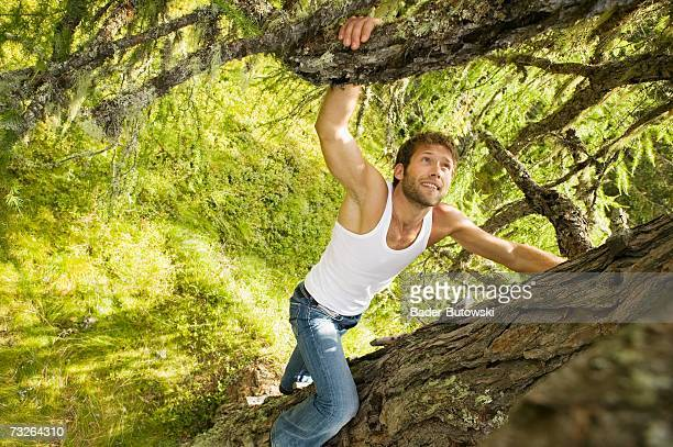 young man climbing on tree, elevated view - vest stock pictures, royalty-free photos & images