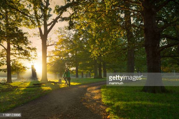 young man cycling in richmond park, london - richmond park stock pictures, royalty-free photos & images