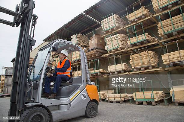 Young man driving a forklift truck in timber yard