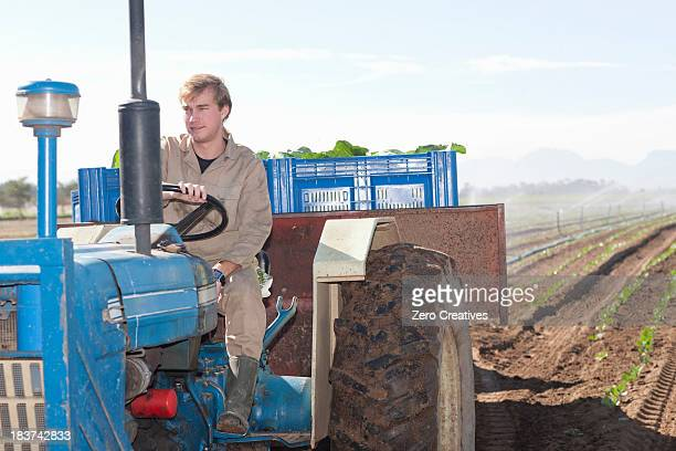 Young man driving tractor