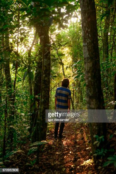 junger mann genießen einen naturlehrpfad in rio de janeiro - mata atlantica stock-fotos und bilder
