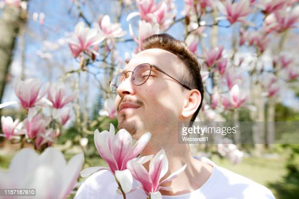 young man enjoying magnolia blossom - ein mann allein stock-fotos und bilder