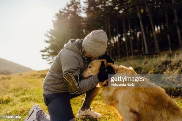 giovane che si allena con il suo cane - vertebrato foto e immagini stock