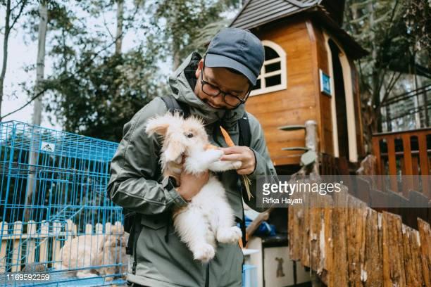 young man feeding rabbit at rabbit farm in bandung - bandung stock pictures, royalty-free photos & images