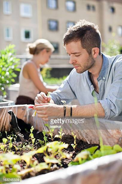 Young man gardening with woman in the background
