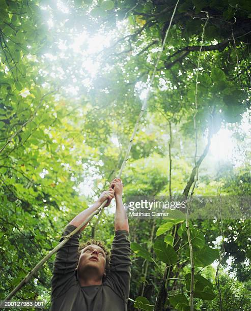 Young man grabbing vine in rainforest
