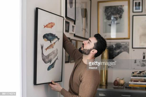young man hanging painting on wall at home - ornato foto e immagini stock