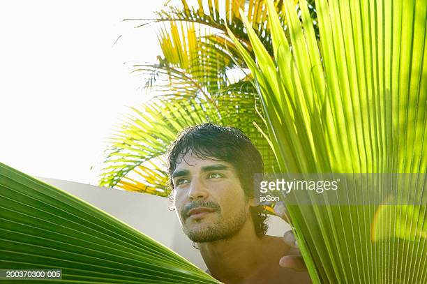 Young man hiding behind palm leaves, close-up