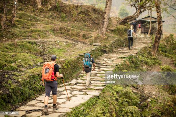 young man hiking through the rainforest - annapurna conservation area stock photos and pictures