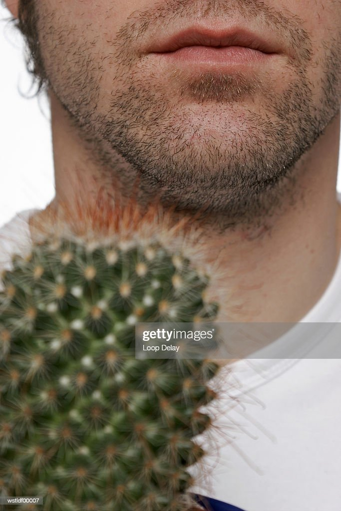 Young man holding cactus plant : Stock Photo