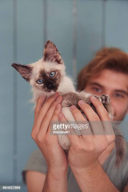 Young man holding kitten, close-up