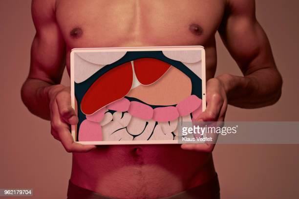young man holding tablet in front of body to display stomach & intestines - stomaco umano organo interno foto e immagini stock