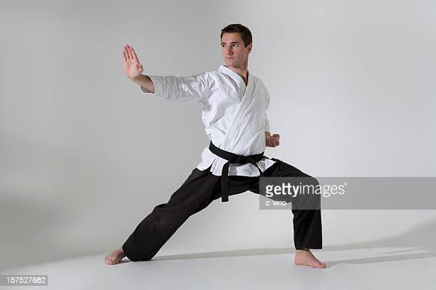 young man in a martial arts pose with a black belt - judo stock photos and pictures