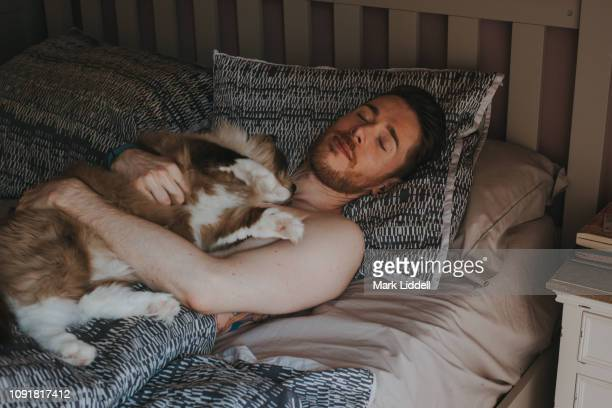 young man in bed with a ragdoll cat lying on his chest - hairy chest 個照片及圖片檔