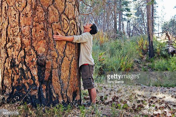 young man in forest hugging large tree trunk, los angeles, california, usa - tree hugging stock pictures, royalty-free photos & images