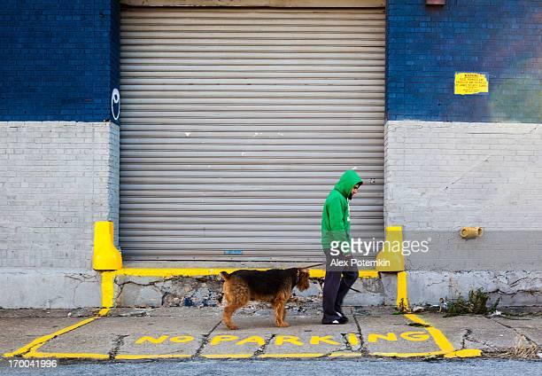 グリーンジャケットを着ている若い男性の犬の散歩、ブルックリンニューヨーク
