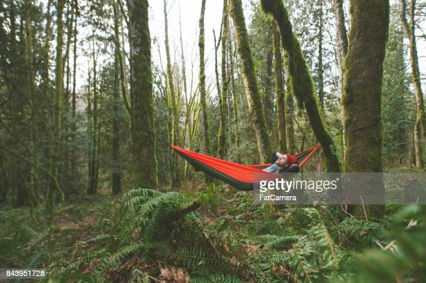 young woman in hammock in forest - hammock stock photos and pictures
