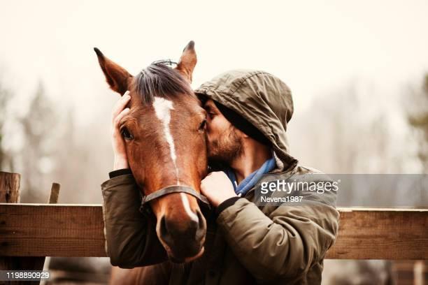 美しい馬にキスする若い男。 - 馬場馬術 ストックフォトと画像