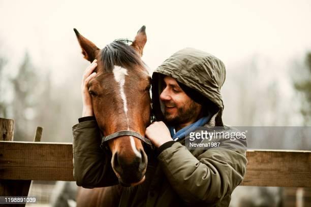 giovanotto che bacia beautiful horse. - cavallo equino foto e immagini stock