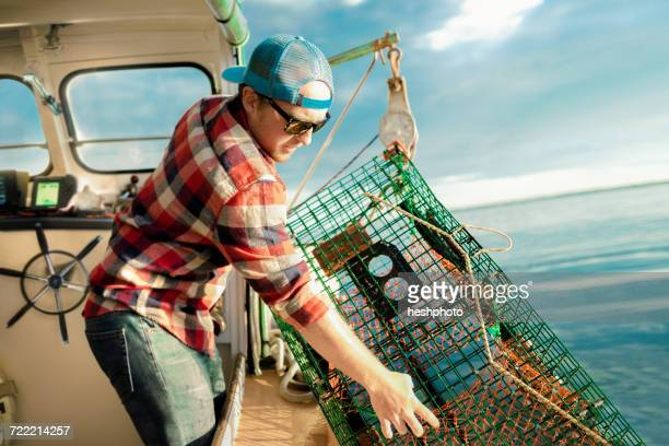young man lifting lobster cage from winch on fishing boat on coast of maine, usa - heshphoto stock pictures, royalty-free photos & images