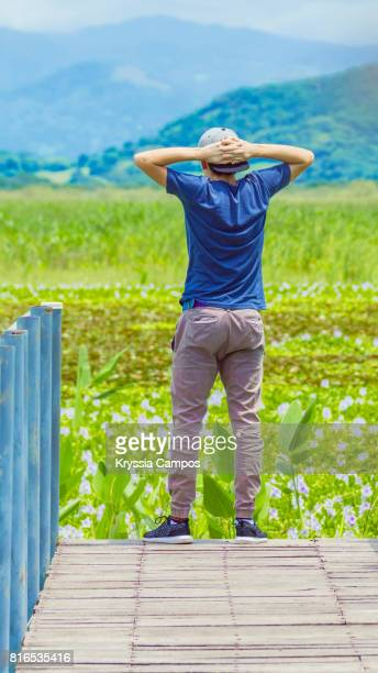 Young man looking at landscape at Palo Verde Swamp, Palo Verde National Park