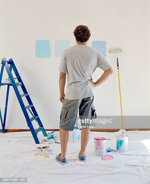 Young man looking at paint colours on wall, rear view