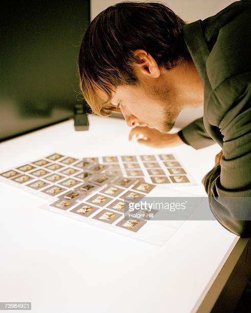 Young man looking at slide transparencies on a light box
