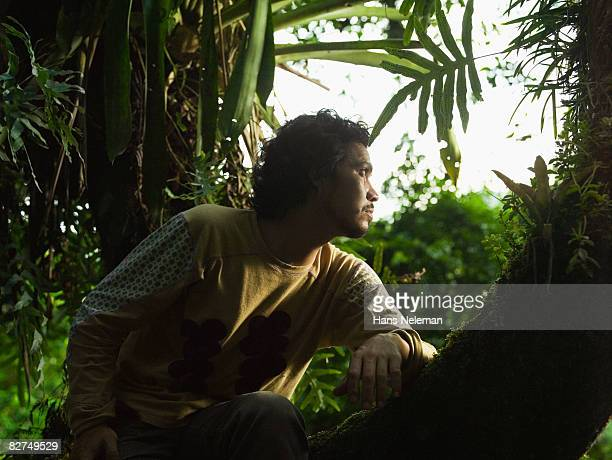 young man looking out into the forest from a tree - las posas stock pictures, royalty-free photos & images