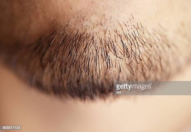 Young man of beard,close up