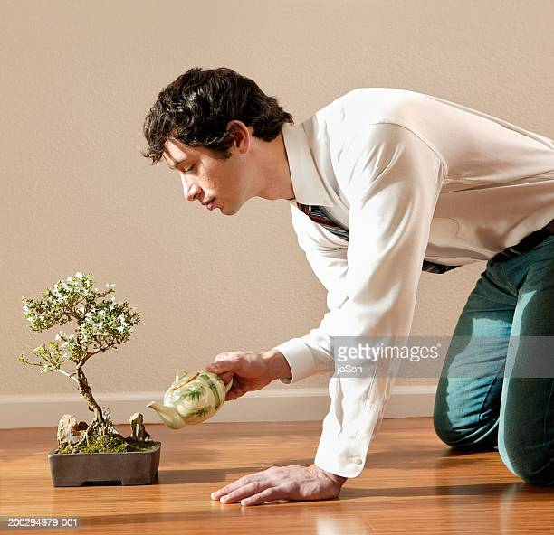 young man on floor watering bonsai plant with teapot, side view - bonsai tree stock pictures, royalty-free photos & images