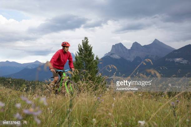 Young man on mountain bike rides across meadow