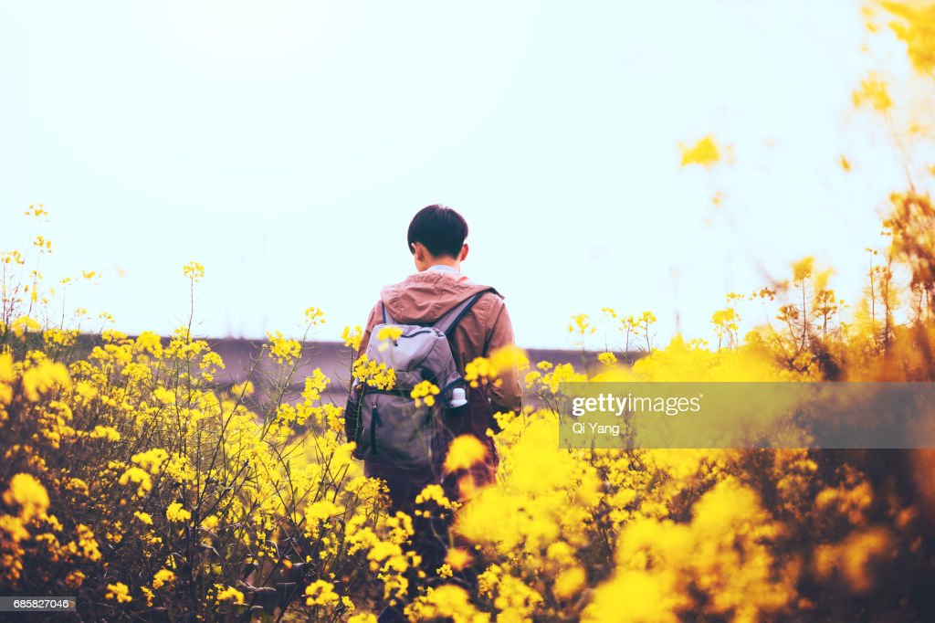 Young man on the farm : Stock Photo