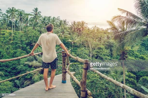 hombre joven en la terraza de madera sobre la selva contemplando la belleza de la naturaleza - selva tropical fotografías e imágenes de stock