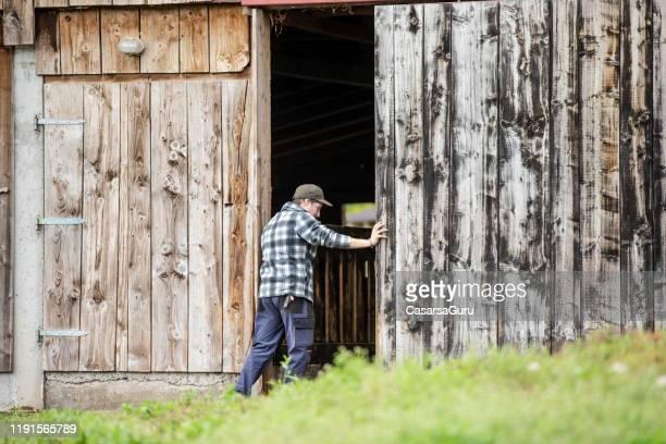 パチューリングヤギのための木製の納屋のドアを開ける若い男 - ストック写真 - 農家の納屋 ストックフォトと画像