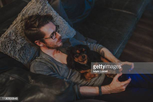 young man playing video games with a cavalier king charles dog in his lap - hairy man stock pictures, royalty-free photos & images