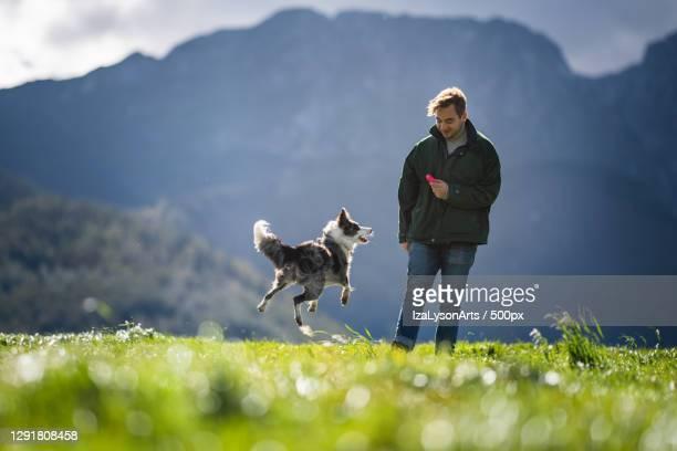 young man playing with dog in mountain area,poland - collie fotografías e imágenes de stock