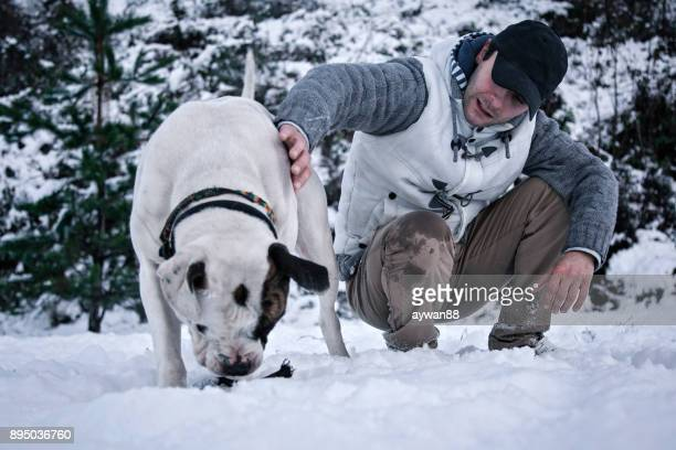 young man playing with dog - american bulldog stock photos and pictures