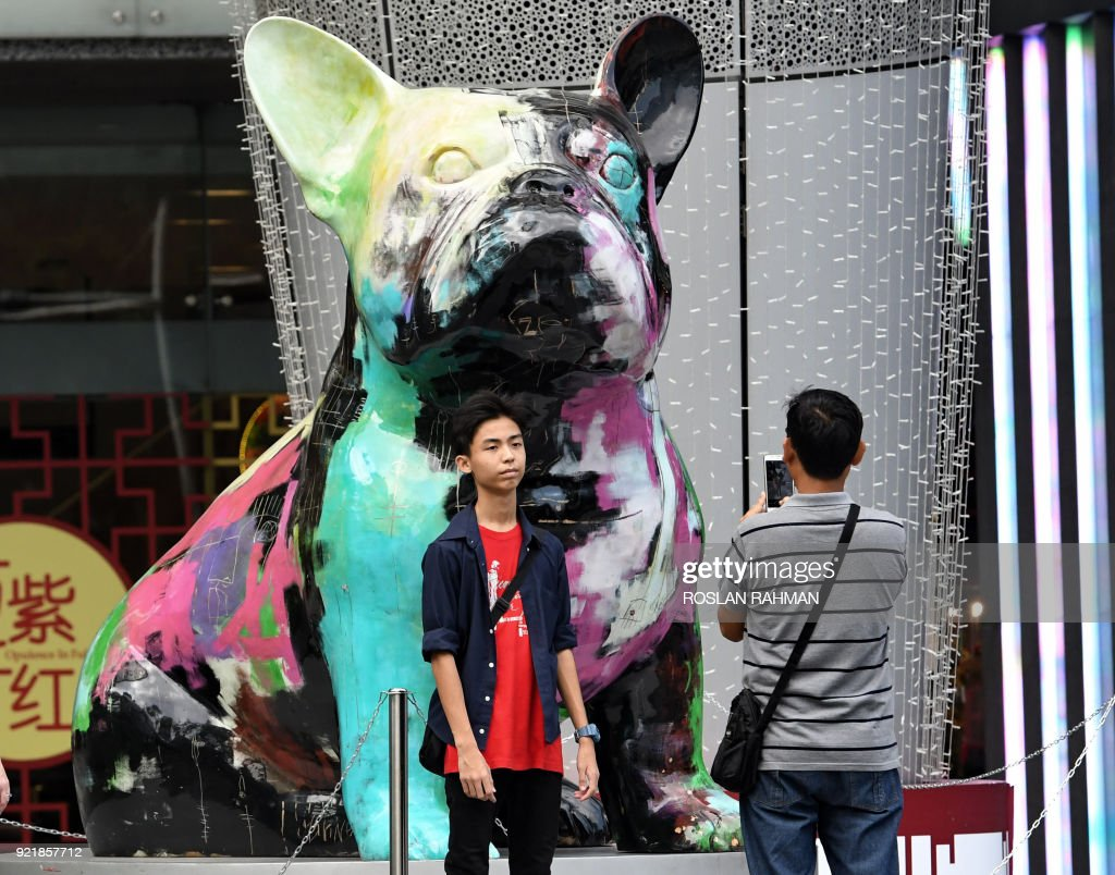 A young man poses next to a colourful dog figurine on display to mark the Lunar New Year, this year being the Year of the Dog, outside a mall along the Orchard Road shopping district in Singapore on February 21, 2018. / AFP PHOTO / Roslan RAHMAN