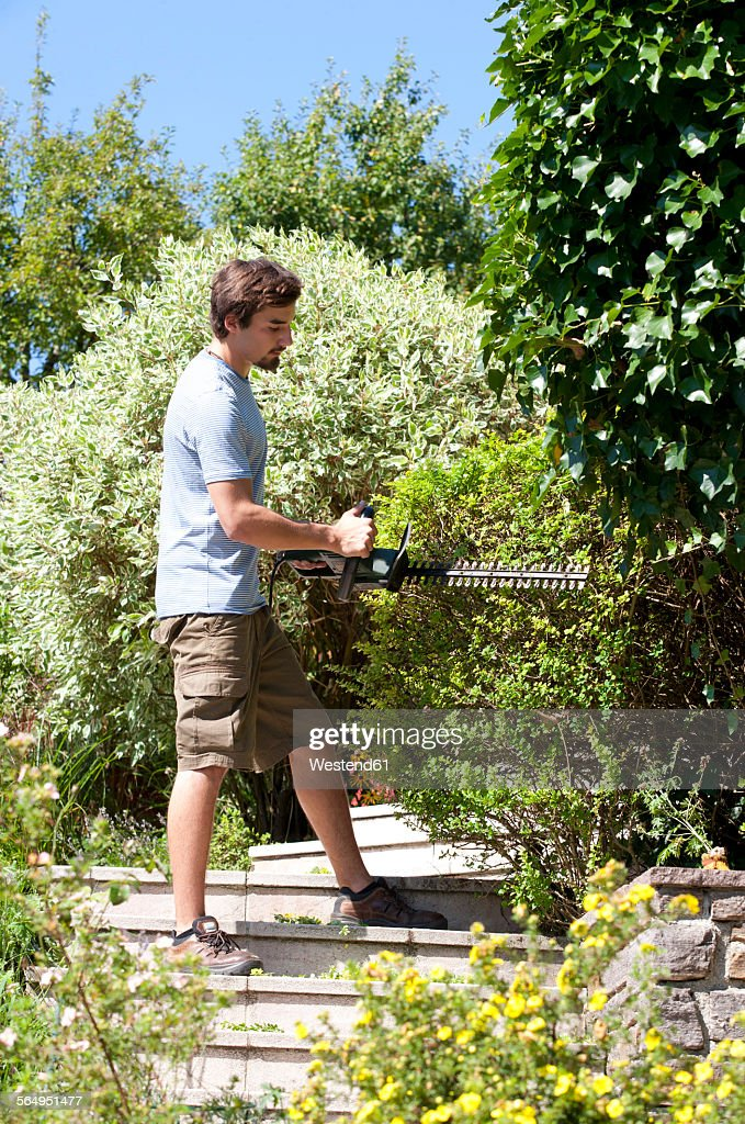 Young man pruning hedge with electric saw : Stock Photo