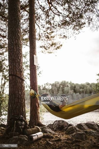 young man reading book in hammock against through tree trunk - sweden stock pictures, royalty-free photos & images