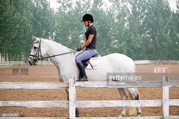 young man riding a horse - 乗馬ズボン ストックフォトと画像