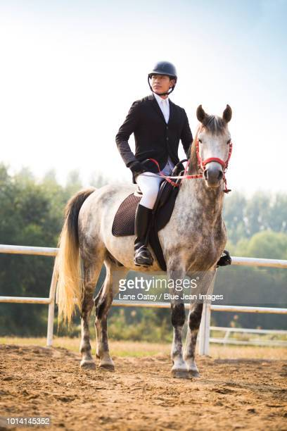 young man riding horse - riding hat stock pictures, royalty-free photos & images