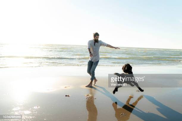 young man running and playing with his dog on the beach - um animal - fotografias e filmes do acervo