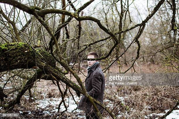 Young Man Seen Through Bare Tree In Forest