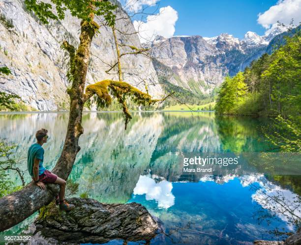 Young man sitting on tree above water, looking into distance, reflection in lake, Obersee, Salet am Koenigssee, National Park Berchtesgaden, Berchtesgadener Land, Upper Bavaria, Bavaria, Germany