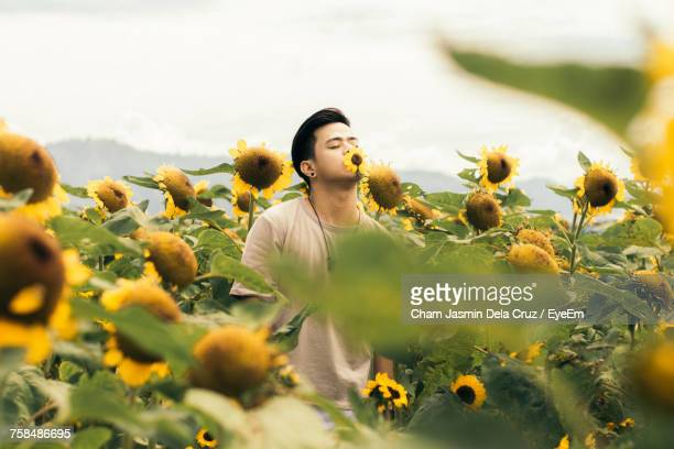 Young Man Smelling Sunflower At Farm