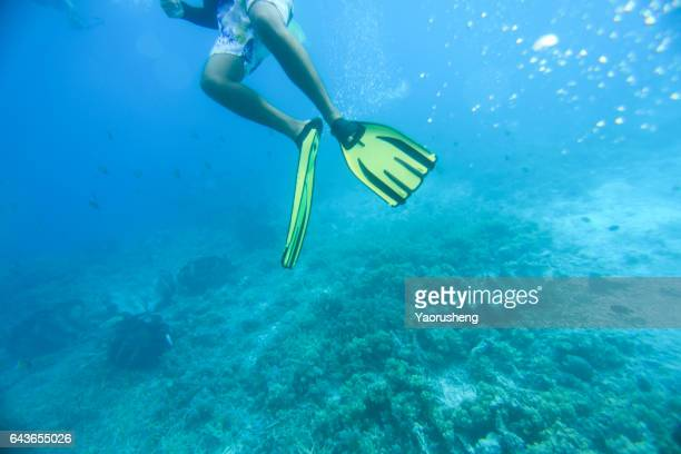 Young man snorkeling in the ocean