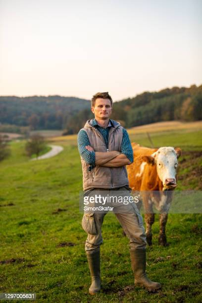 young man standing with cow in field - rancher stock pictures, royalty-free photos & images