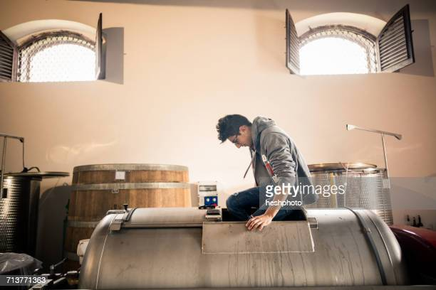 young man stepping on harvested grapes in vineyard vat - heshphoto photos et images de collection